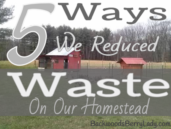 5 Ways we reduced waste on our homestead