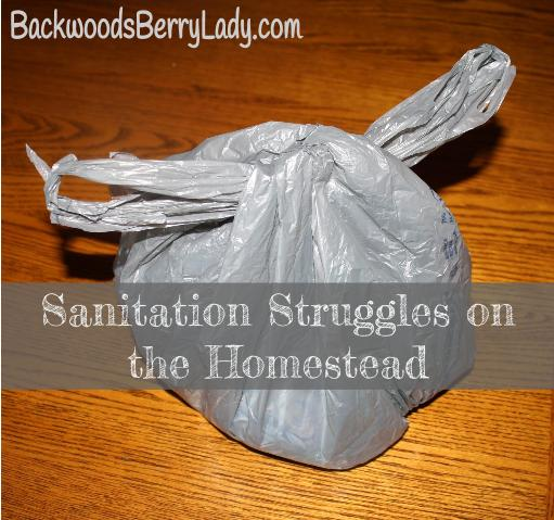 Sanitation Struggles on the Homestead