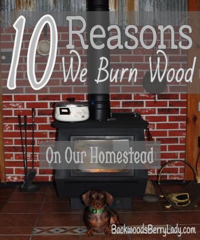 10 Reasons We Burn Wood on Our Homestead (2)